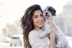 Hundehaftpflichtversicherung Vergleich, Hundehaftpflichtversicherung Vergleich