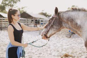 Pferdehaftpflichtversicherung Vergleich, Pferdehaftpflichtversicherung Vergleich